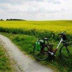 Fahrrad am Radweg