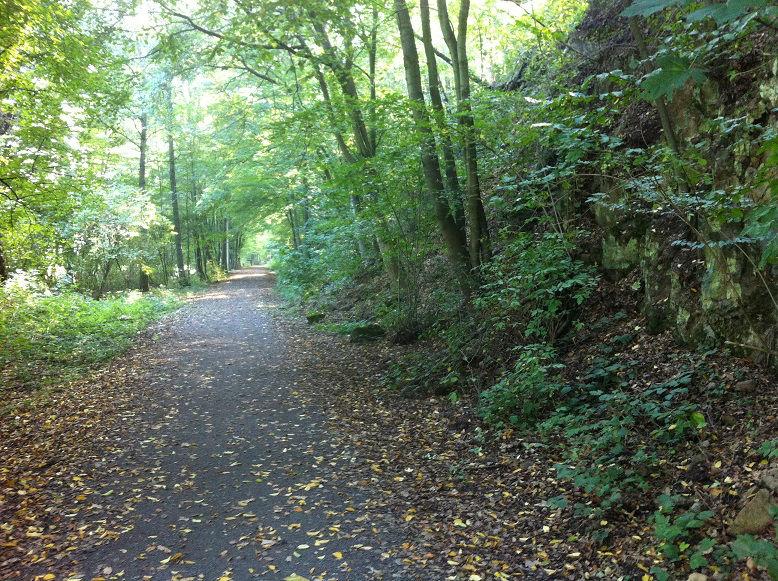 Mulderadweg bei Grimma